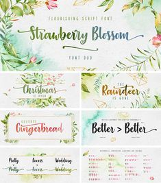 Strawberry Blossom Font Dafont Com Brush Fonts Free Free