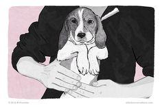 How do you greet a dog politely?