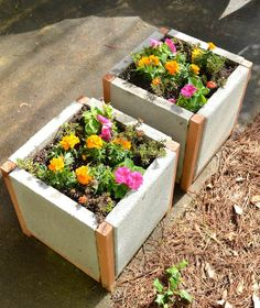 Using pavers as planters. I would paint the concrete in fun colors. Love this … - Easy Diy Garden Projects Diy Concrete Planters, Concrete Projects, Diy Planters, Flower Planters, Garden Planters, Concrete Pavers, Tall Planters, Garden Boxes, Balcony Garden