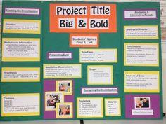 9 Best Poster Board Ideas Images Poster Board Ideas School