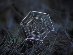 These Macro Photos Of Snowflakes Are Totally Breathtaking. With his stunning close-up photos of snow in Moscow, Russia, Alexey Kljatov proves nature is the world's most spectacular artist. Fotografia Macro, Micro Photography, Nature Photography, Photography Ideas, Winter Photography, Amazing Photography, Snowflake Photography, Snowflake Pictures, Photo Macro