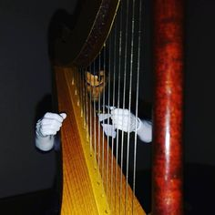 A lot of times Frank enjoys playing his harp in the dark. It creates a relaxing feel as he concentrates on playing his songs.