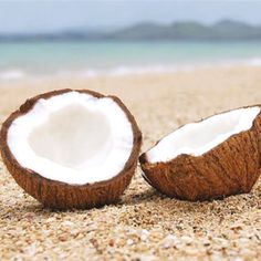 Glyceryl Cocoate. Coconut derived emollient (skin conditioning agent). Ours is ECOCERT approved. Found in AEOS Energising Conditioner and AEOS Realive Serum.