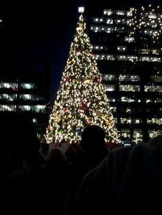 Market square tree