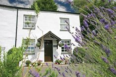 Welcome to Mill Cottage in the Lake District. Just one of our a huge range of Lakelovers holiday cottages.