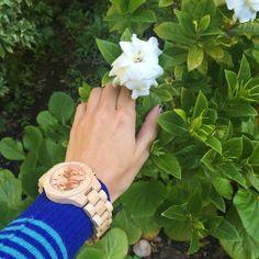Sidney Series Maple & Rose Gold Wood Watch by JORD #jordwatch #wearJORD #BeYou