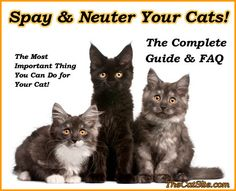 Spay and Neuter Your Cats