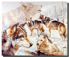 Brighten up any room with these wolves in snow winter wildlife animal art print poster. This poster will make a great theme and adding a touch of fun to your child's décor. It will be a great addition for your home décor and brings you many compliments from your guests. It also ensures high quality product with perfect color accuracy.