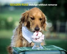 Remember the Golden Rule: Indulge Without Remorse.