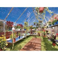 Octave Silver 8' Octave Silver 8', Greenhouse, Palram- Tilij Hydroculture Grow Room, Double Doors, Ebay, Silver, Products, Walk In Greenhouse, Roof Drain, Hothouse, Horticulture