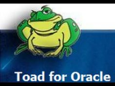 How to connect to Oracle Database using Toad for Oracle