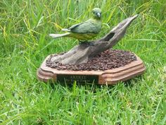 Endangered Hawaiian (Kauai) Carved bird called AKEKEE