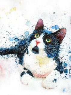 Messy Tuxedo Cat by The Watercolor Guy, via Flickr- I want to buy this when I have a place to hang it.