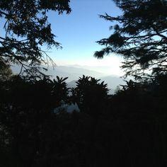 #shimla#india#himalayas