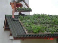 A green roof or living roof is a roof of a building that is partially or completely covered with vegetation and a growing medium, planted over a waterproofing. Living Roofs, Living Walls, Green Architecture, Residential Architecture, Contemporary Architecture, Sustainable Architecture, Pavilion Architecture, Earth Homes, Earthship