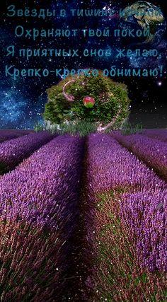 Good Night Gif, Beautiful Soul, Basil, Logo Design, Beautiful Hearts