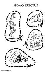 schede di storia classe terza homo erectus