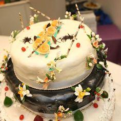 Ecco la bellissima #torta per festeggiare il #ferragosto con i tanti amici che sono stati al Blu Suite Hotel!