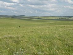 Eurasian Steppe - Wikipedia, the free encyclopedia Middle Ages, Middle East, Eurasian Steppe, Fantasy Setting, Silk Road, Ancient China, Biomes, Historical Pictures, Fantasy Artwork