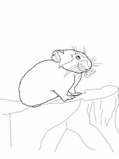 Pika coloring page from Mice category. Select from 31983 printable crafts of cartoons, nature, animals, Bible and many more. Printable Crafts, Free Printables, Yellowstone Vacation, Free Printable Coloring Pages, Road Trip, Snoopy, Cartoon, Animals, Fictional Characters