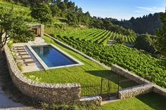 piscine privative et vignes landscape