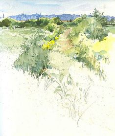 Cooley Lake Landscape by Cathy Johnson Landscape Sketch, Watercolor Landscape, Watercolor And Ink, Landscape Art, Landscape Paintings, Watercolor Paintings, Watercolours, Watercolor Sketchbook, Art Sketchbook