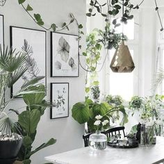 Indoor Gardens For Your Home Decorating Your Home, Interior Decorating, Botanical Interior, Style Deco, Interior Design Tips, New Room, Interior Design Living Room, Interior Livingroom, Home And Living