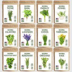 Herb Seeds, Garden Seeds, Planting Seeds, Best Herbs To Grow, Growing Herbs, Cilantro Herb, Garden Ideas Driveway, Lavender Seeds, Herb Garden In Kitchen