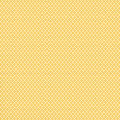 """https://flic.kr/p/c1p5Ad 