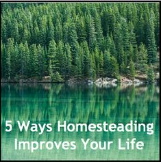 5 Ways Homesteading Improves Your Life | Posted By: SurvivalofthePrepped.com |