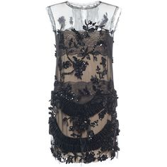 Alberta Ferretti Embellished Tulle Lace Sheer Mini Dress ($5,950) ❤ liked on Polyvore featuring dresses, see through dress, beaded lace cocktail dress, lace mini dress, lace dress and lace shift dress
