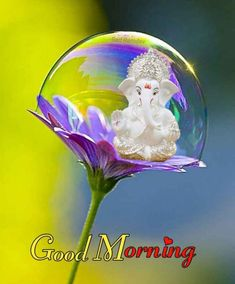 Wednesday Wishes, Wednesday Morning, Good Morning Coffee, Good Morning Images, Anime, Crafts, God, Ganesh, Places