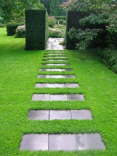 Great use of stepping stones. Like the pattern with the path and then the square bushes.