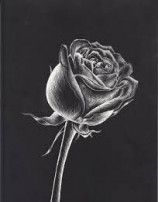 61+  Ideas For Drawing Art Lessons Middle School Black Paper #drawing