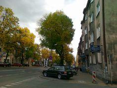 ulica Zamojska