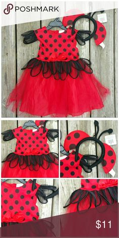 Toddler 3T/4T Lady Bug Costume Cute Black and Red Lady Bug costume with lady bug headband. Red Tutu skirt. Excellent pre-loved condition. Worn once two years ago. Costumes Halloween
