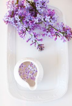 Lilac on a plate by ByRoom, via Flickr. | via ByRoom http://www.flickr.com/photos/estnab/7849933100/