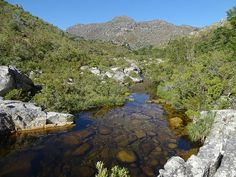 dutoits kloof river - Google Search Rivers, South Africa, Westerns, Landscapes, African, Google Search, Places, Water, Outdoor