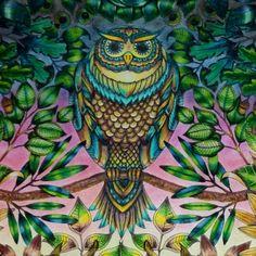 Johanna Basford   Picture by Luiz Rodrigo Zenaro   Colouring Gallery