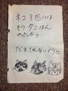 お母さんの書き置き : だまされないように I've already fed three cats. Don't be deceived. From Mom. Animals And Pets, Funny Animals, Cute Animals, I Love Cats, Cool Cats, Japanese Funny, Three Cats, Kawaii Cat, Neko Cat