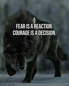 Motivational and Inspirational Thoughts, Inspiring Lines, Best Motivational Quotes to succeed in life, Life-changing Motivational Quotes, Qu. Quotes About Attitude, Inspiring Quotes About Life, Inspirational Thoughts, Lone Wolf Quotes, Lion Quotes, Wisdom Quotes, True Quotes, Great Quotes, Motivational Quotes For Men