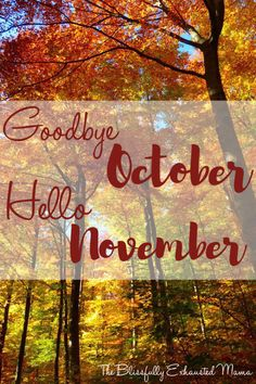 Goodbye October, Hello November  – The Blissfully Exhausted Mama