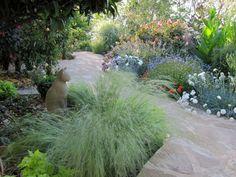 DaisyinCrete via Gardenweb