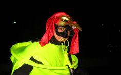 Scuba Dive Cape with Alpha Dive Centre Dive Shops and School. Take your scuba diving gear, swim with seals in the Atlantic or explore wrecks in False Bay. Dive Shop, Scuba Diving Gear, Halloween Night, Cape Town, Swimming, Events, Diving Equipment, Swim, Scuba Gear