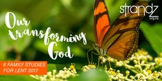 Our Transforming God / 6 part lent resource for families from Strandz.org.nz