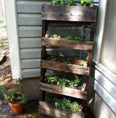 DIY ideas - How to build a vertical herb garden from a wooden pallet