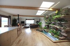 Indoor vertical garden - cave wall for self-watering kitchen herb garden