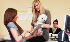 Today is Take your Dog to Work Day. Founded in 1999, by Pet Sitters International, it was created to celebrate the great companions dogs make and to encourage their adoption from humane societies, animal shelters and breed rescue clubs.