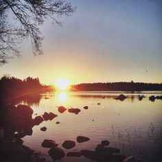 Road Trip to Östhammar. (friends, good times, sweden, archipelago)