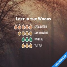 Lost in the Woods — Essential Oil Diffuser Blend essential oil blends doterra Essential Oil Scents, Essential Oil Diffuser Blends, Essential Oil Uses, Young Living Essential Oils, Doterra Essential Oils, Healing, Lost, Diffuser Recipes, Naturopathy